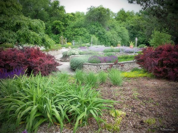 Klehm Arboretum &Botanic Garden